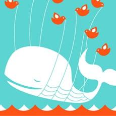 Twitter ne sera jamais grand public